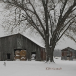 Farm blanketed in snow