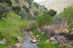 Cherith or Wadi al-Yabis by samdefranc